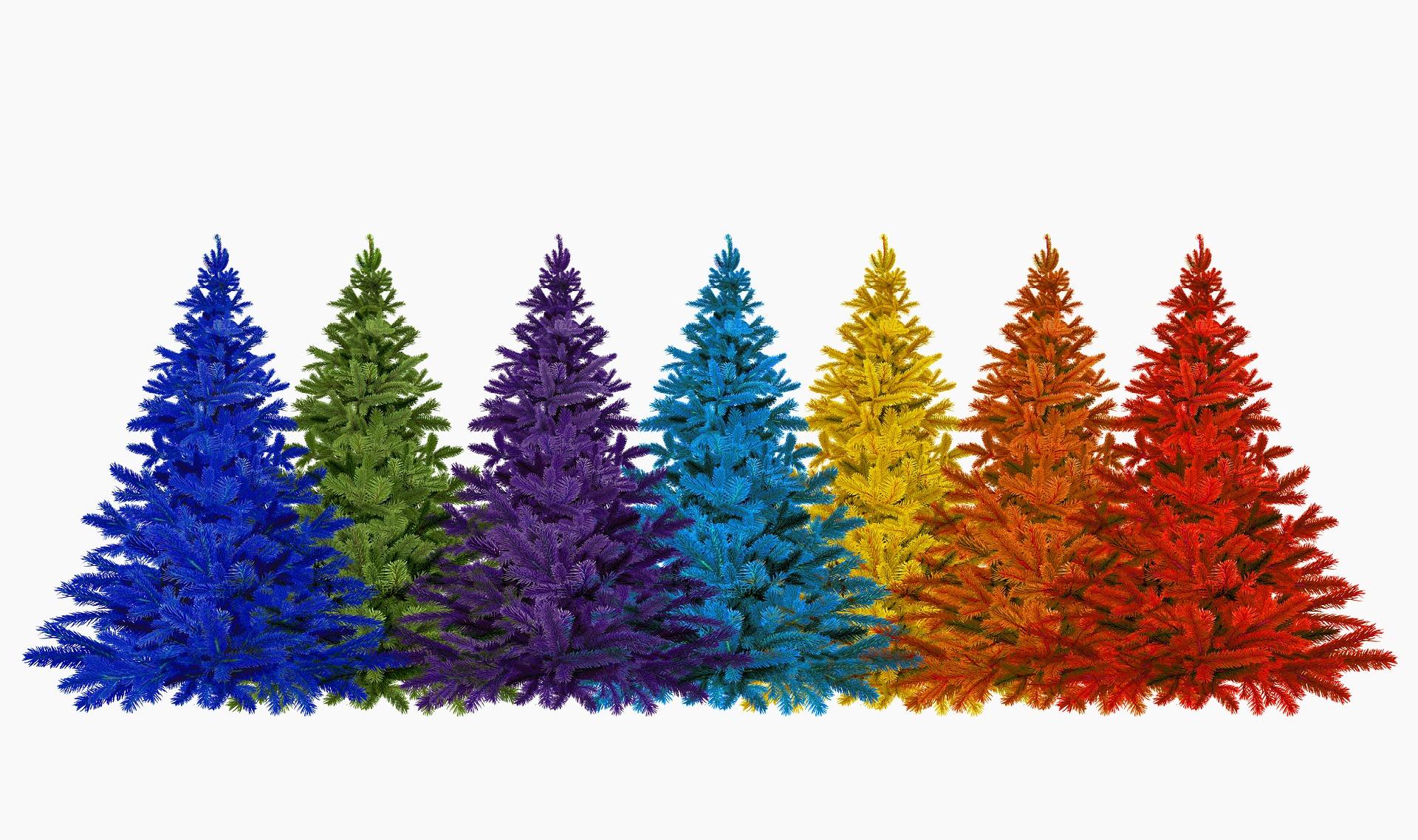 Különböző színű karácsonyfák